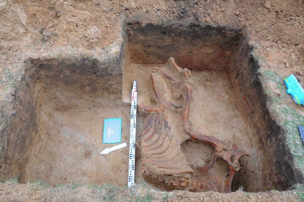 Archeologiniai tyrimai - Telšiai 4